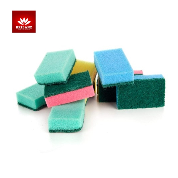10PCS DISH SPONGES COLOURED BRILIANZ K28