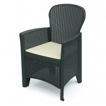 FOLIA RATTAN ARMCHAIR W/CUSHION ANTH
